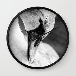 Swan close up Wall Clock