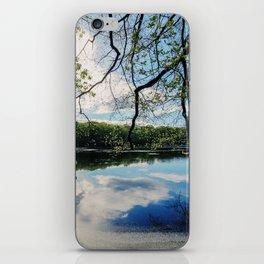 Pond Views iPhone Skin