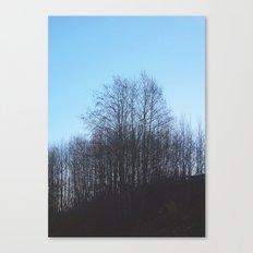 Evening Sillouette Canvas Print