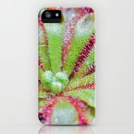 Drosera iPhone Case