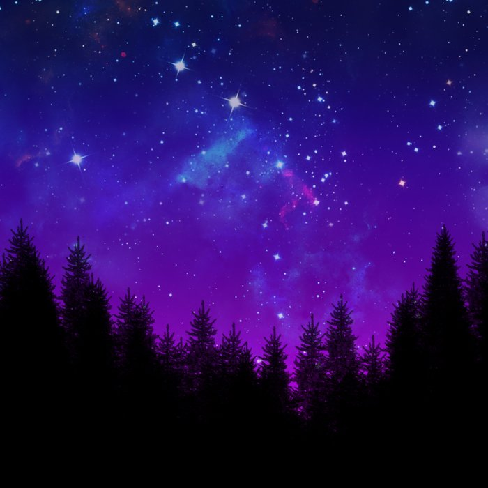 Galaxy Over the Forest at Night Comforters
