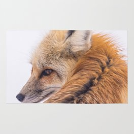Red Fox Close-Up Rug