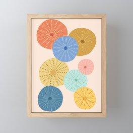Coloful Sea Urchins 2 Framed Mini Art Print
