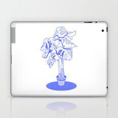 Swiss Cheese Plant Laptop & iPad Skin