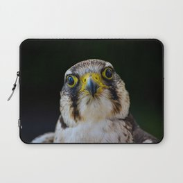 Cute Falcon Bird  Laptop Sleeve