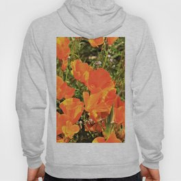Orange Gold California Poppies by Reay of Light Hoody