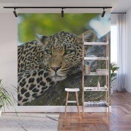 Aqua_Leopard_20180101_by_JAMColorsSpecial Wall Mural