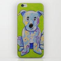 pitbull iPhone & iPod Skins featuring Pitbull by K.ForstnerArt