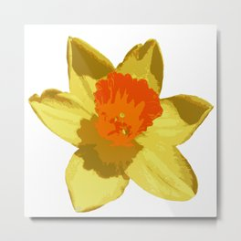 Spring Daffodil Vector Isolated Metal Print