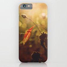 Beauty begins Slim Case iPhone 6s