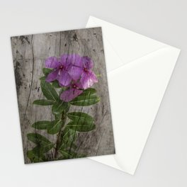 Periwinkles on driftwood Stationery Cards