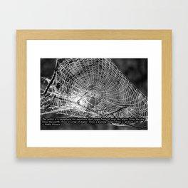 Raindrop Covered Spiderweb Framed Art Print
