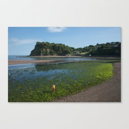 Weedy beach  Canvas Print
