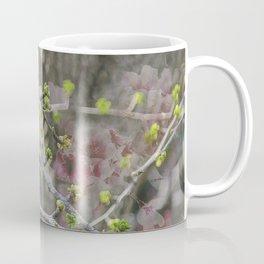 His Majesty the Cardinal Coffee Mug