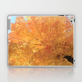 Autumn Explosion Laptop & iPad Skin