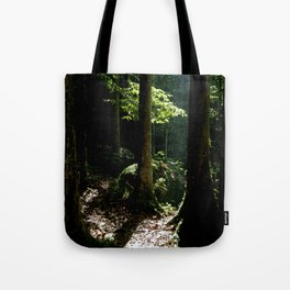 Light in tropical rainforest Tote Bag