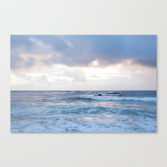 Momentarily Canvas Print