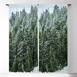Snow Bank Woodlands // Photograph of the Dense Blue Green Evergreen Pine Tree Forest Blackout Curtain