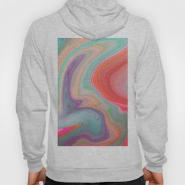 Should Have Taken Acid With You. Hoody