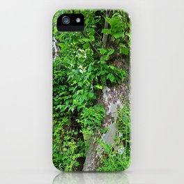 Quietly Quirky iPhone Case