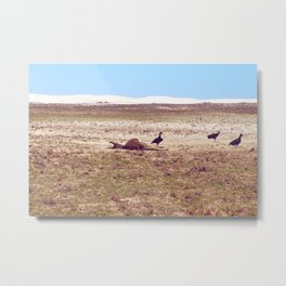 Vultures on Donkey Metal Print