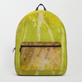 Abstract No. 213 Backpack
