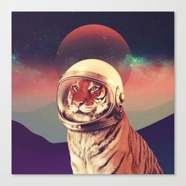 Cosmos Cat Canvas Print