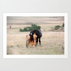 Young Cheyenne with Pony Art Print