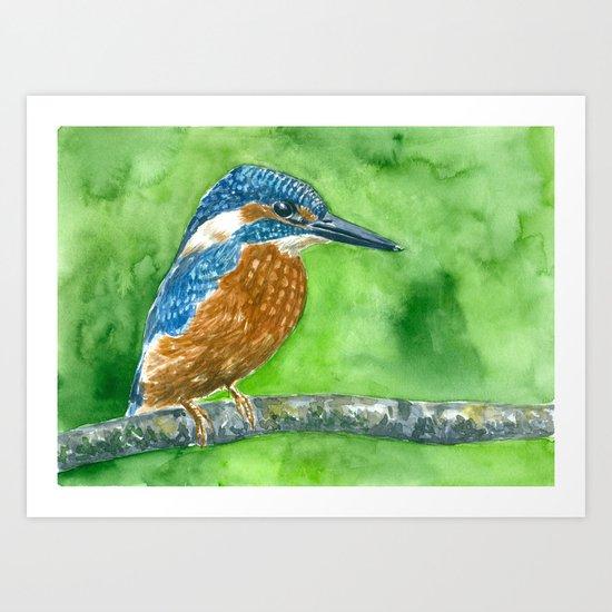 Kingfisher bird Art Print
