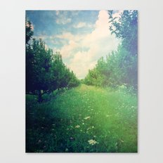 Apple Orchard in Spring Canvas Print