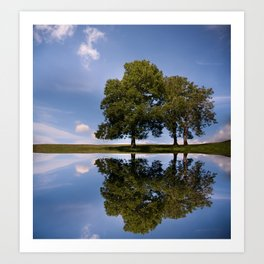Three Trees reflected Art Print