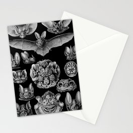 1904 Haeckel Chiroptera Stationery Cards