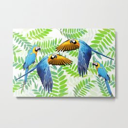 Flying and sitting macaw in jungle Metal Print