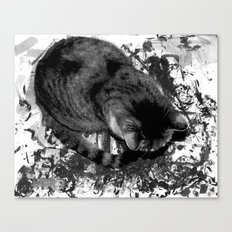 Paint Paws Canvas Print