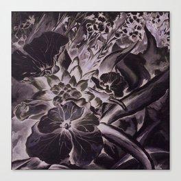 Erysimum Canvas Print