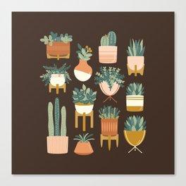 Cacti & Succulents Canvas Print