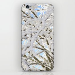 Icy Branches iPhone Skin