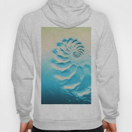 Fosil abstract beach fractal background Hoody