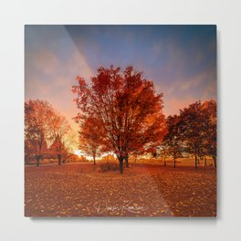 Fall Vibes Metal Print