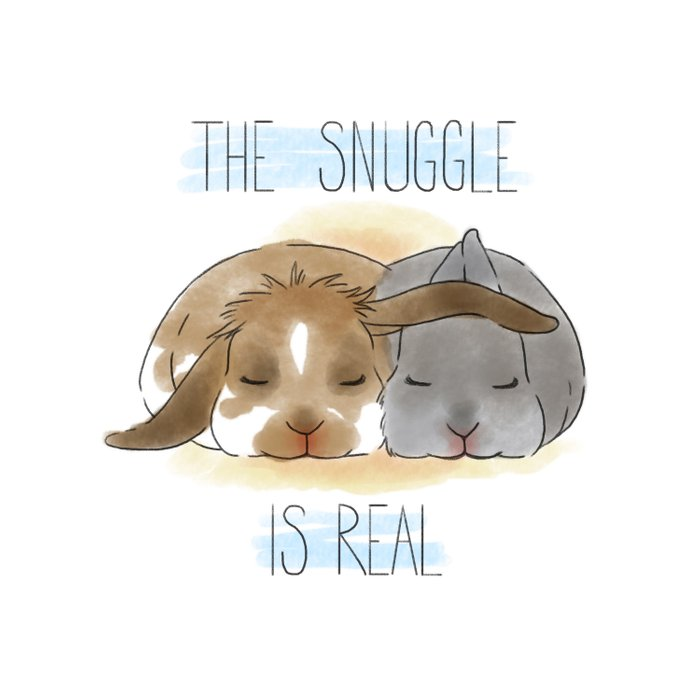 The Snuggle is Real Comforters