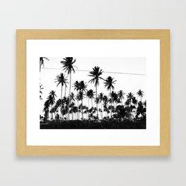 Palms all over Framed Art Print