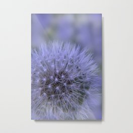 the beauty of a summerday -8- Metal Print