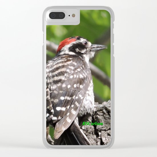 A Nuttal's Woodpecker Up a Tree Clear iPhone Case