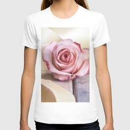 Pink rose and golden ribbon T-shirt