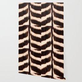 Zebra - zebra stripes -zebra skin - genuine - beautiful  Wallpaper