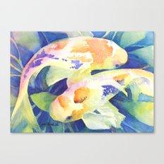 Koi study Canvas Print