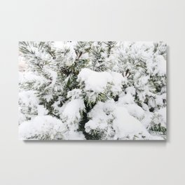Pine Needles in the Snow Metal Print