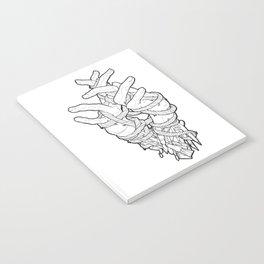Bones Notebook