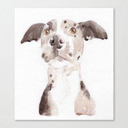 Jake Canvas Print