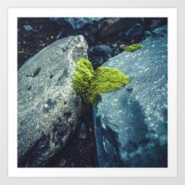 Nature Conquers Art Print